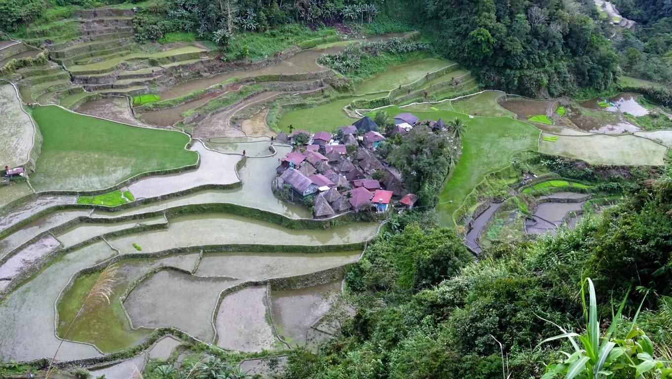 BANAUE-BATAD-KIANGAN